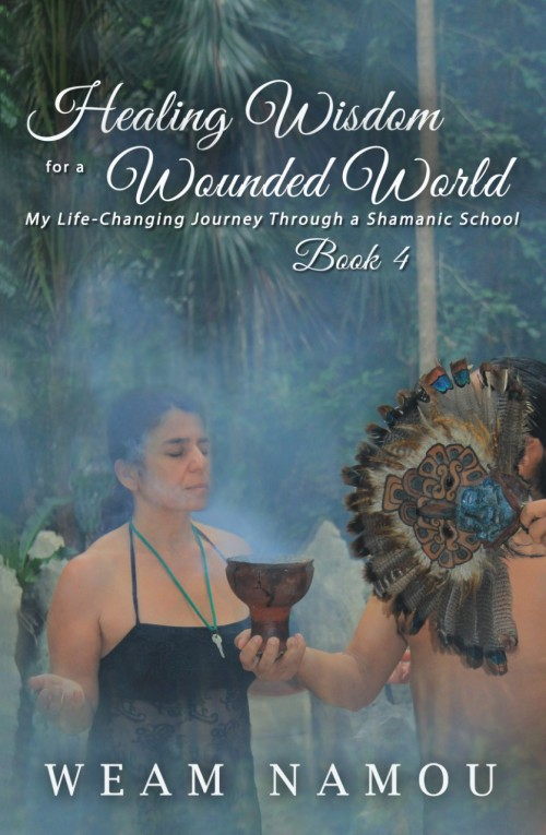 Front Cover for Healing Wisdom Book 4 (300)